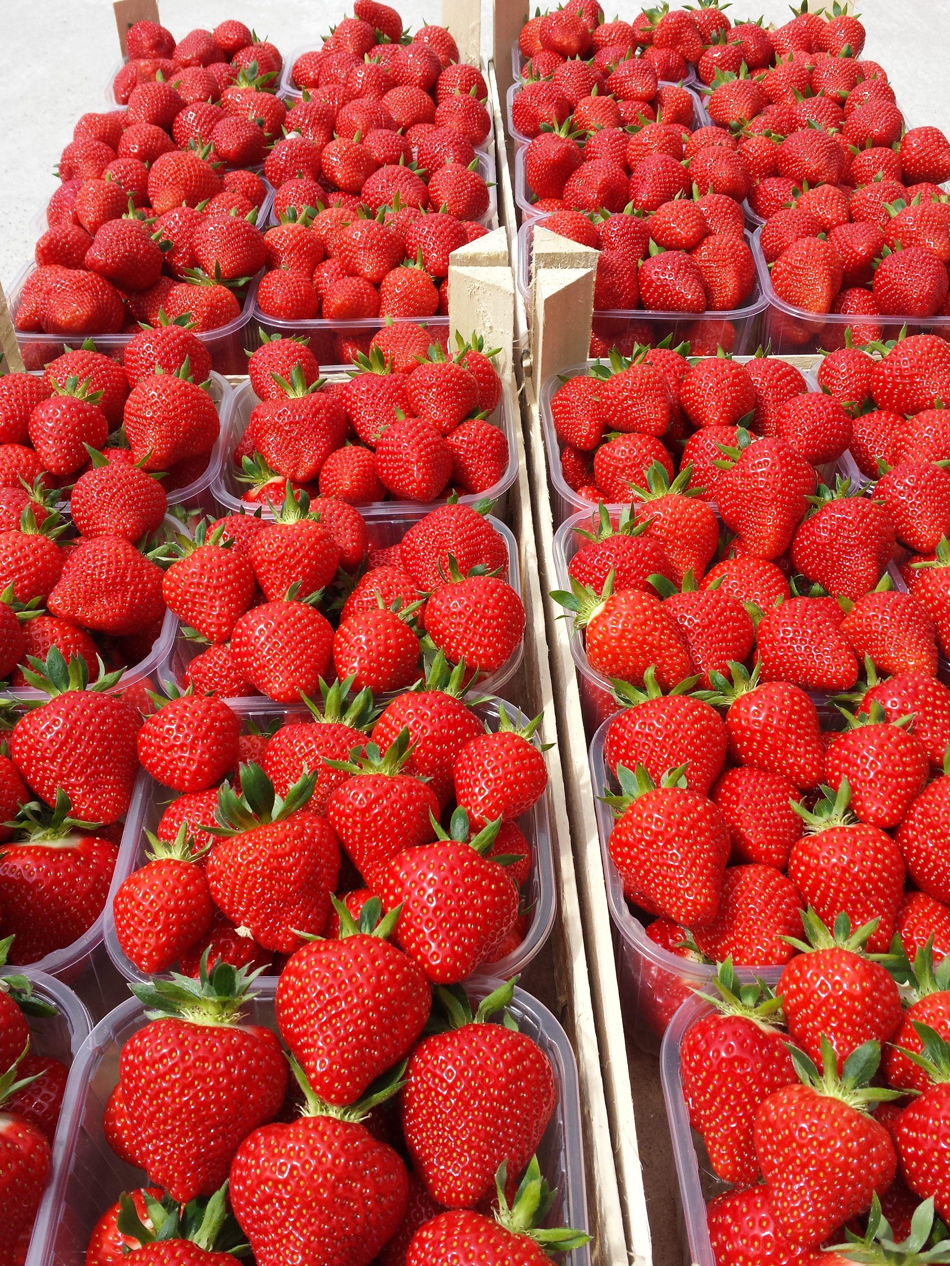 Elma's verkoopt maar liefst 300 dagen per jaar Belgische aardbeien. Kom ze snel eens proeven !